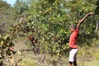 Foto de garoto com as mãos levantadas ele solta uma ave.