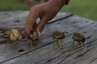 Foto ilustrando quatro brinquedos feitos com sementes de arvores.