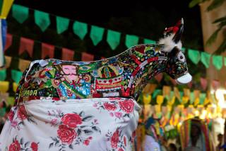 Foto do bumba meu boi, um boi com vários desenhos coloridos em seu corpo.